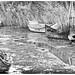 """Boats in """"Ria de Aveiro"""""""