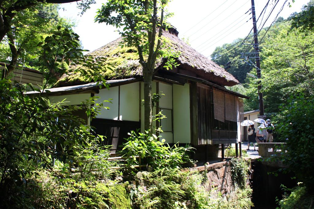 Kita Kamakura Hydrangea spot (17)
