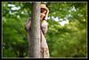 Aki D-Jam @ Sannomiya (Ilko Allexandroff / イルコ・光の魔術師) Tags: light portrait people woman white black slr art girl beautiful fashion japan umbrella canon dark hair asian photography google interesting glamour women natural emotion bokeh good feminine awesome flash explore more most kobe portraiture 大阪 mostinteresting ambient osaka dslr aki akiko 関西 人 ポートレート djam 写真 naniwa ilko asianbeauty 50d キャノン なにわ strobist canon50d 関西学院 matoishi 関西学院大学 beautyshoots allexandroff イルコ グラマー 的石彩記子 彩記子 的石
