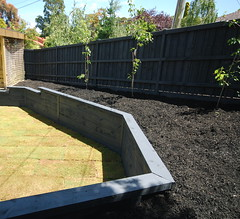 Capped Painted Retaining Wall (Supreme Green Landscaping) Tags: wall fence steel painted posts turf mulch retaining