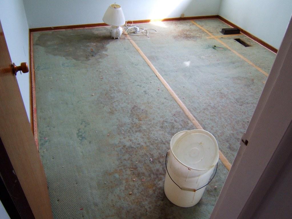 Acorn Wood Floor Maintenance Ltd