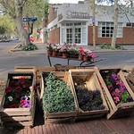 "Flower Stand <a style=""margin-left:10px; font-size:0.8em;"" href=""http://www.flickr.com/photos/14315427@N00/6189488169/"" target=""_blank"">@flickr</a>"