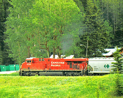 RD6697  CPR 8744 Field (Ron Fisher) Tags: cpr canadianpacificrailway alltypesoftransport