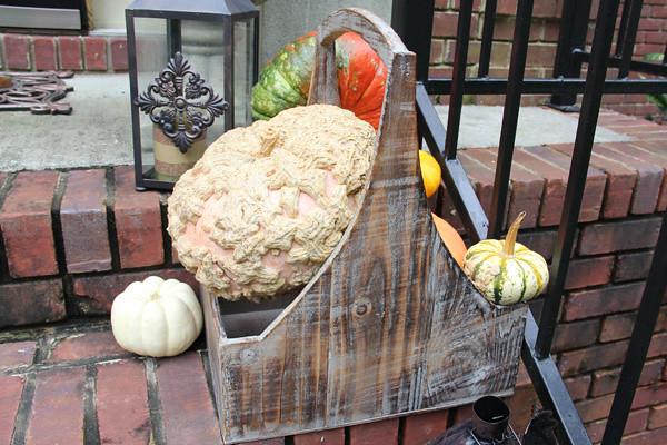 Pumpkins in a wood basket