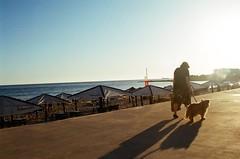 11040016 (Carlos Cancela Pinto) Tags: sunset dog film beach portugal 35mm oldlady cascais carcavelos carloscancelapinto