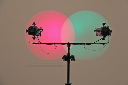 Venn diagram (under the spotlight) Amalia Pica : pavillon central