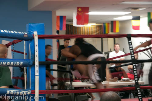 Grappling bout in the Bronx NYC