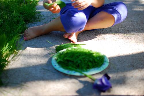 salad5-0159