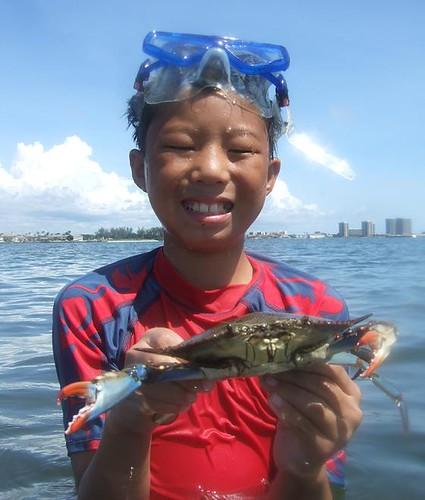 Rocky & blue crab