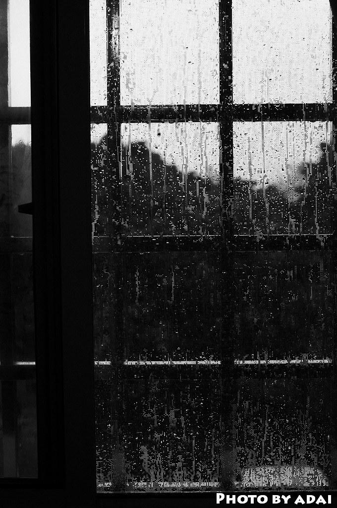 2011.7.11 下大雨