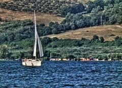 barca1 hdr (frens_deby) Tags: summer lake lago holidays sailing estate vela viterbo vacanze bolsena woter hs10