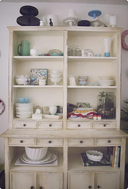 terrarium 1 shelves