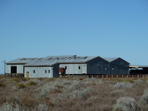 Willandra shearing station
