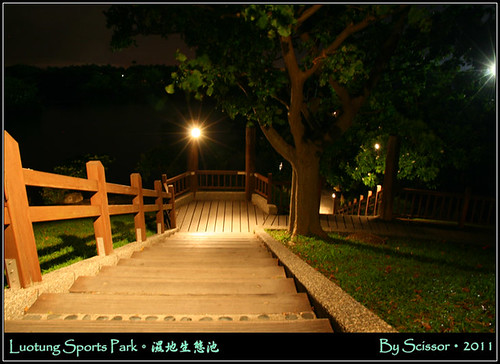 夜晚的木質階梯特別美