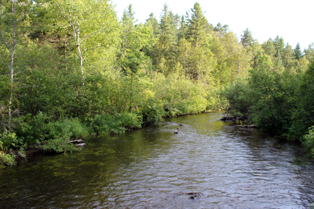 pigeon river2