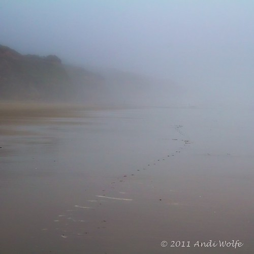 Footprints in the mist by andiwolfe (back from travels, need to catch up)