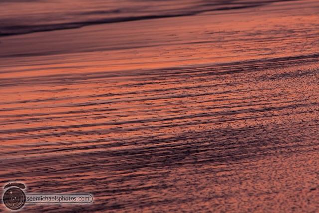 Swamis Beach 72411 72411 © Michael Klayman-012