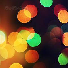 306/365 - Colores - £×Þ¶©rE