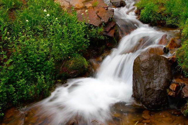 Griffith Creek-5.JPG