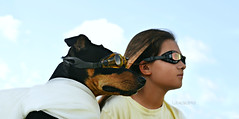 dog is my co-pilot (Laurarama) Tags: dog girl humor flight goggles humour odc gettycollection nikkor50mm14ai nikond7000 collectionp