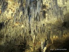 ALGERIA Tlemcen caves ain fezza (jazair) Tags: madrid usa newyork paris roma london algeria spain lyon miami winner cave stalagmite paysage oran stalactite grotte roche algeri djezair tlemcen beniadd ainfezza