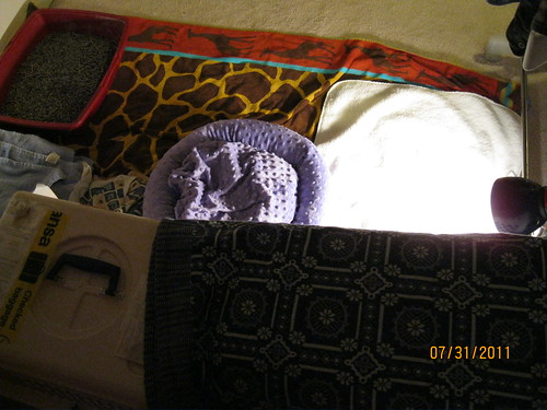 07/31/2011: Masala quarantine recovery room