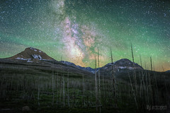 Day 23: Stargazing in Glacier national park (Airglow) (dmkdmkdmk) Tags: park trees usa mountains nature night america stars landscape fire nikon northwest glacier national burnt rockymountains hdr milkyway d700 nordwestamerikausaglaciermilchstrasse
