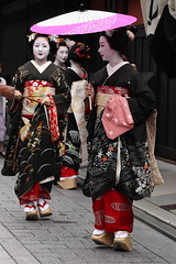 The Kyoto Beauty !! (Teruhide Tomori) Tags: japan kyoto traditional event maiko geiko parasol 京都 日本 祇園 kimono gion 着物 higashiyama hanamachi 西陣織 芸妓 舞妓 花街 hassaku 八朔 mameyuri earthasia mamesaku mamemaru ぽっこり nishhjjnori