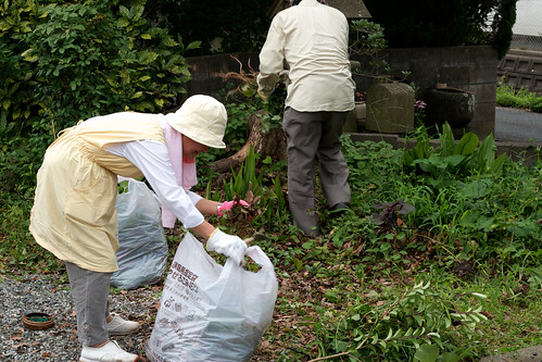 2011年度 順光寺盆前清掃