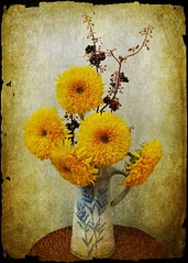 Summer Sun (Bama4) Tags: flowers vintage warmth textures sunflowers pitcher