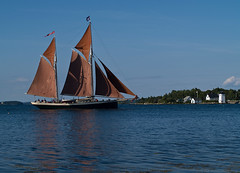 Red Sails At Grindle Point (todonn9364) Tags: maine islesboro buoyant boatsschooners