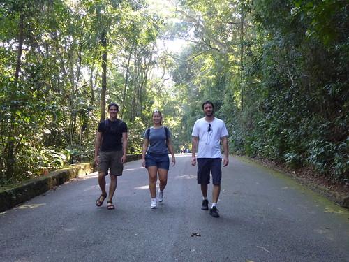 Tijuca Forest in Rio