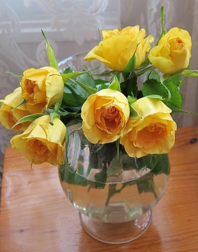 Vanhat ruusut by Anna Amnell