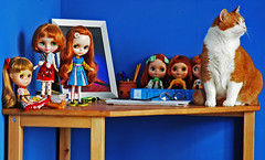 Scully & dollies. (Athanassia) Tags: red white cat kat dolls tabby blythe neo rood wit takara tomy scully htk cwc ticked cyper