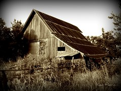 Barn (K. Horn) Tags: old abandoned sepia barn farm loveit explore trail missouri springfield picnik fiatlux wonderworld 10faves golddragon 5for2 aplusphoto planttrail