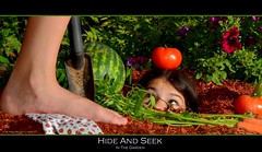 27/52 - Hide and seek (in the garden) [Explored] (RobinHoude) Tags: project plante garden tomato funny flash humor jardin vegetable humour hideandseek barefoot carrot week weeks melon pied tomate 52 lgume projet semaines nupied strobist cachecahe cahette