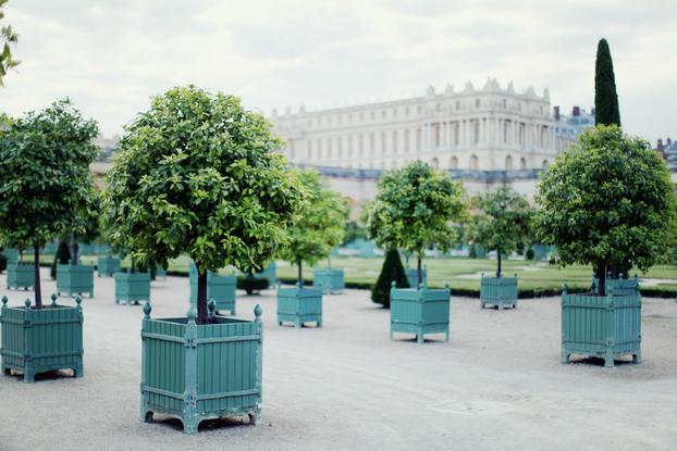 Carnaval de Versailles - Soirée 33