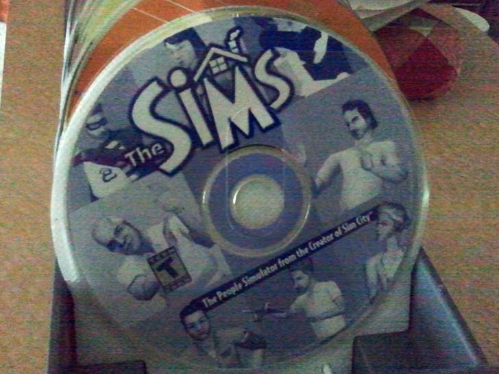 The Sims disc