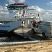 Embarcando o Lobo no ferry para voltar ao contine