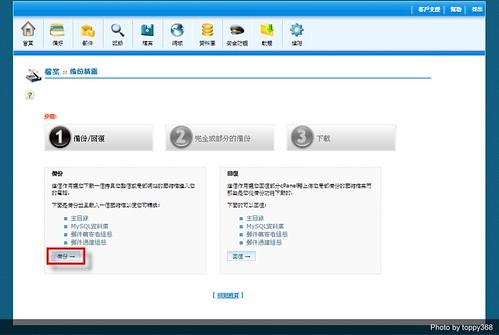 Wordpress cPanel Backup 2