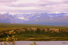 Highway (Rebeak) Tags: camping summer lake snow mountains nature alaska landscape photo nikon glaciers traveltrip rebeak