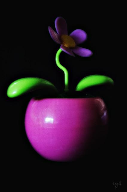 ysabelle's flower