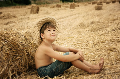 (tchara) Tags: boy smile corn child harvest jeans strawbale hatbox