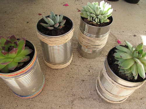 First set of tin can planters #4