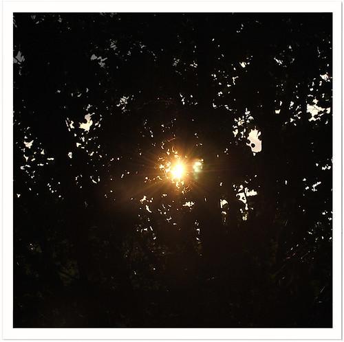 7.18 Sunflare