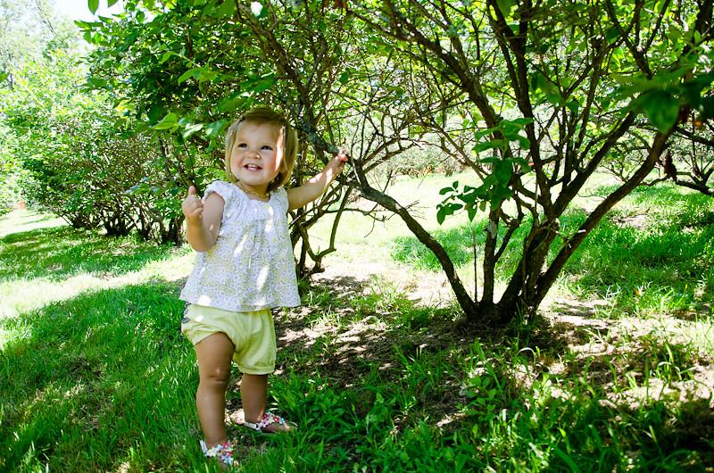 Blueberry Picking Pt 22