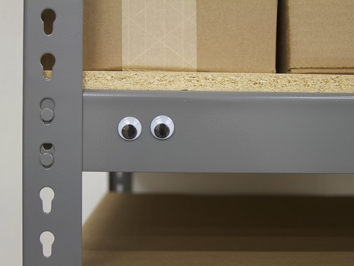 Googly Shelf