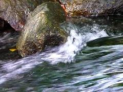 La eterna corriente * (Franco DAlbao) Tags: water ro river lumix agua stream stones galicia gondomar piedras corriente leicalens dalbao francodalbao rozamns