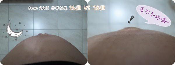 好孕照。26VS28-1