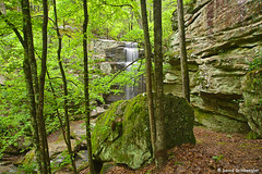 Burden Falls and Canyon Wall (schwaegler) Tags: waterfall illinois spring shawneenationalforest burdenfalls